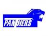 logo-panthers